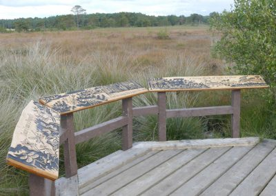 Greenspace Designs - Thursley - Dragonfly Trail