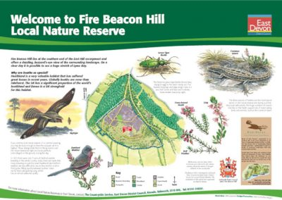 Interpretive Sign - Beacon Hill